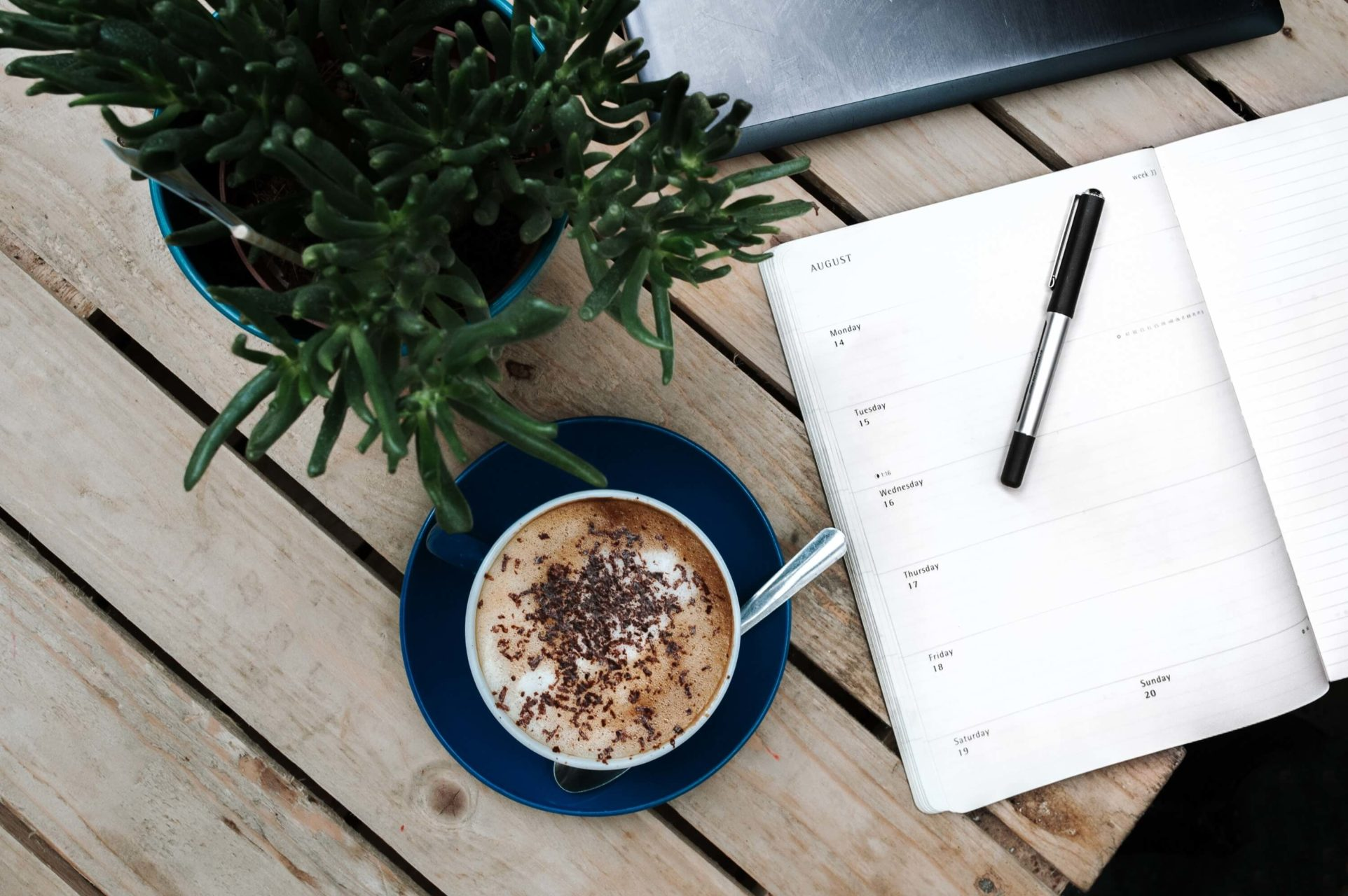 Mug of hot chocolate next to open weekly planner with a plant near it