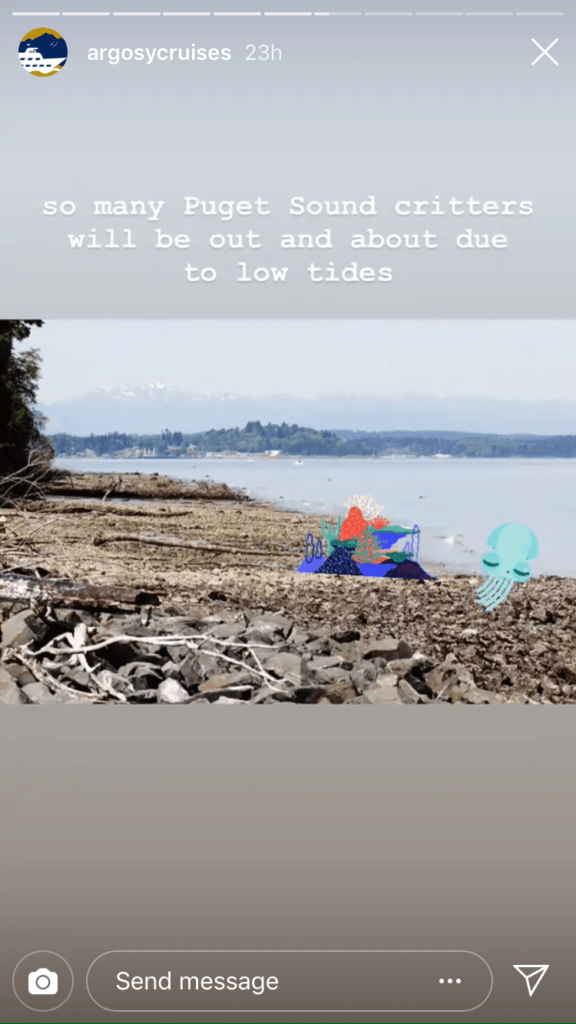 Second photo in the story with the caption 'so many Puget Sound critters will be out and about due to low tides' over another photo of the beach with marine life stickers