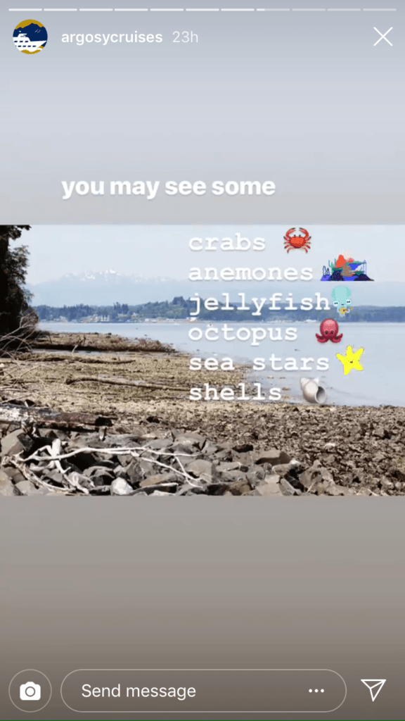 Third photo in the story with the caption 'you may see some crabs, anenomes, jellyfish, octopus, sea stars, and shells' with emojis of each next to the respective word