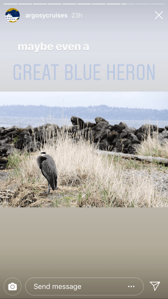 Fourth photo in the story with the caption 'maybe even a Great Blue Heron' atop a Great Blue Heron standing among some tall grass