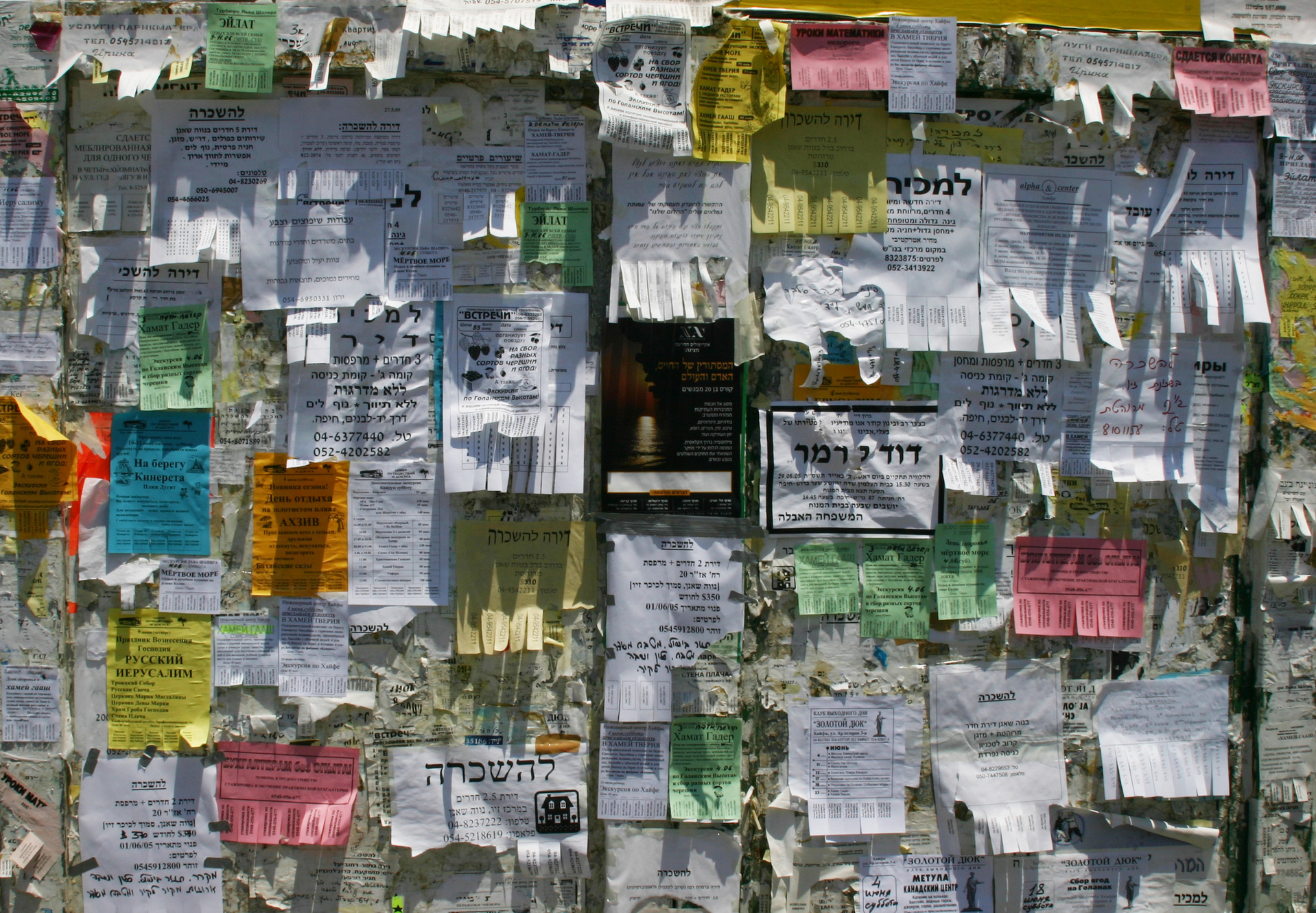 Many flyers of different colors posted on a wall