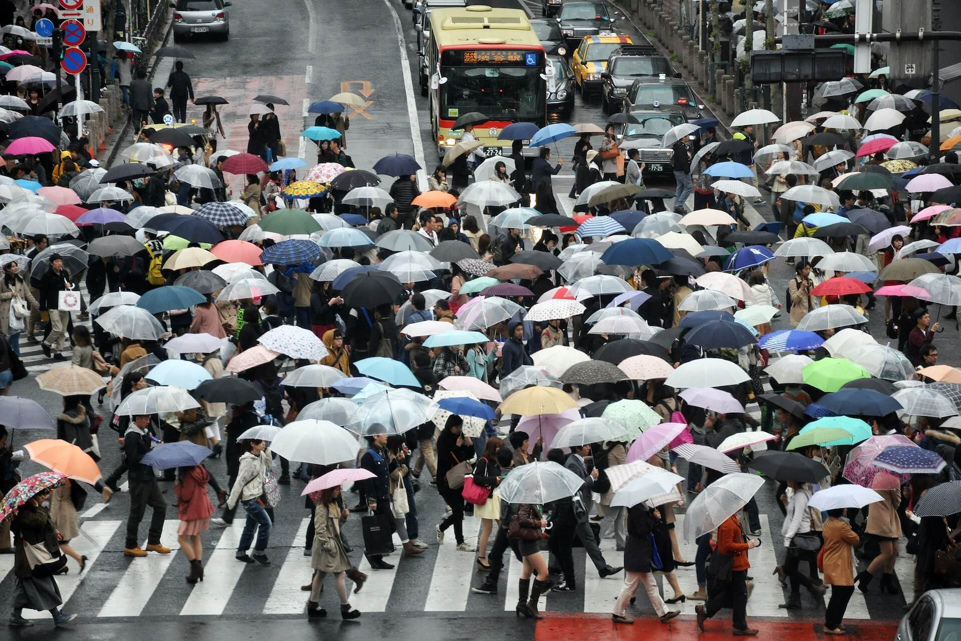crowd of people with umbrellas crossing road