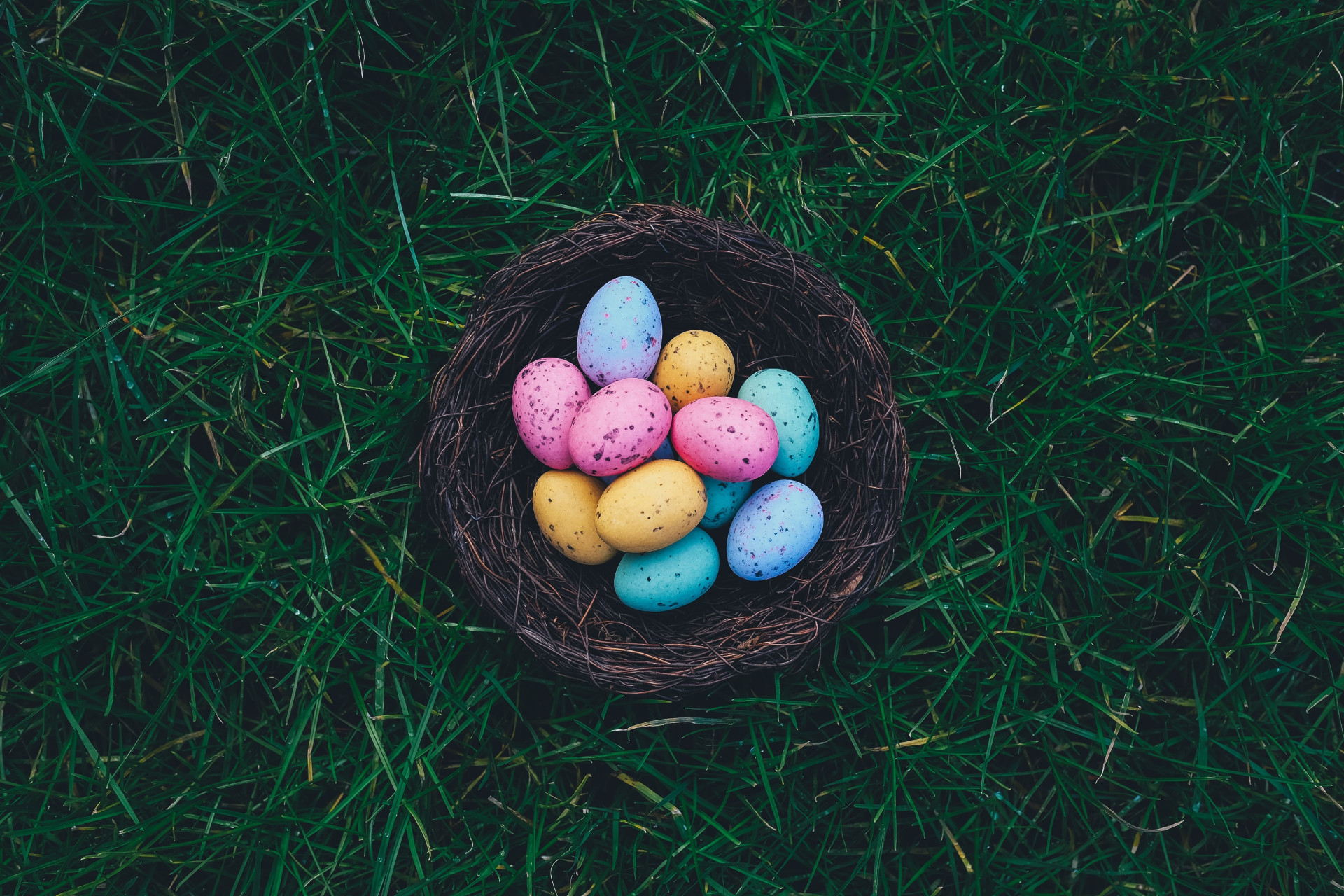 Chocolate eggs in a nest on the grass