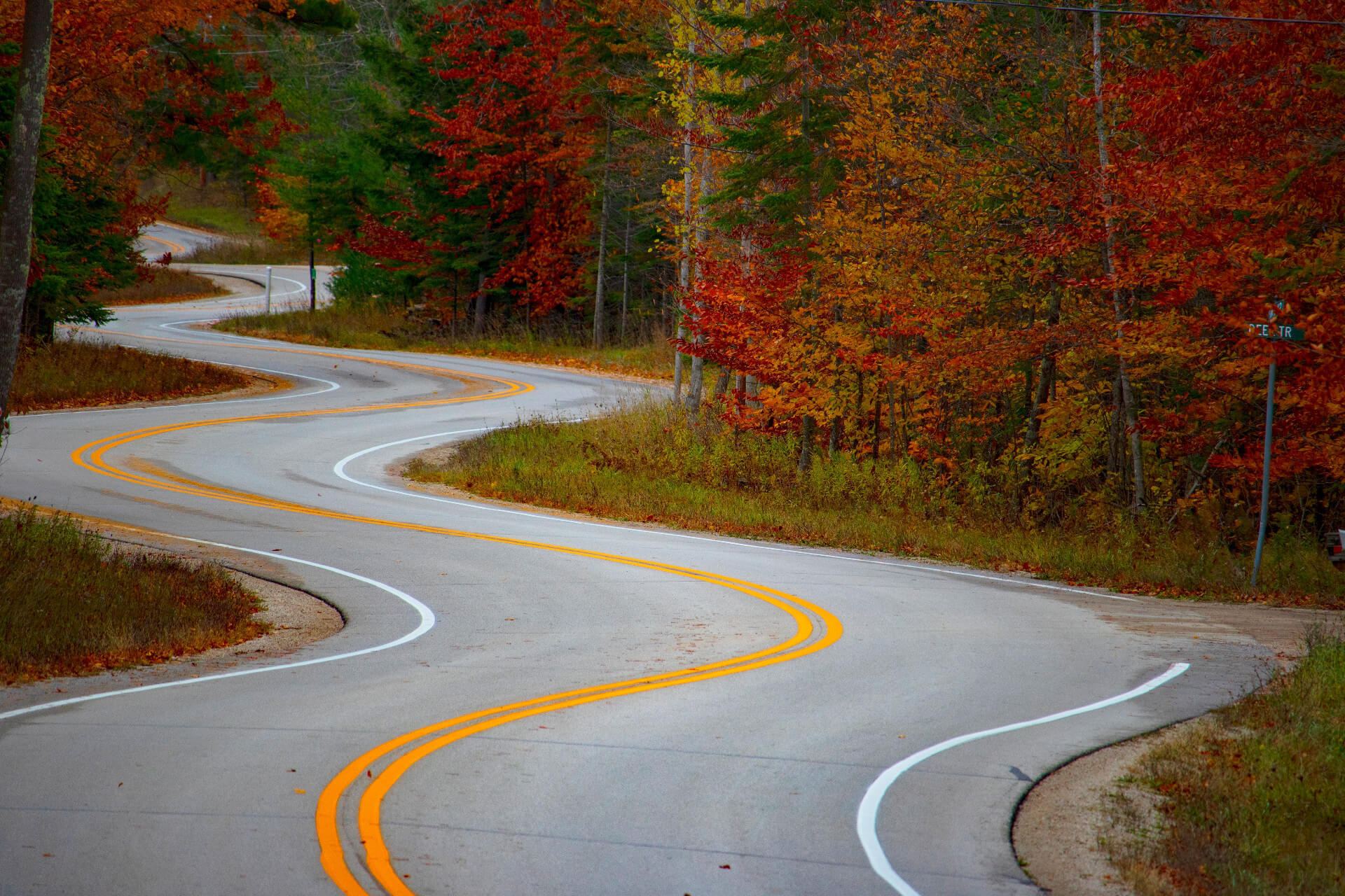 A winding road lined by trees with autumn leaves