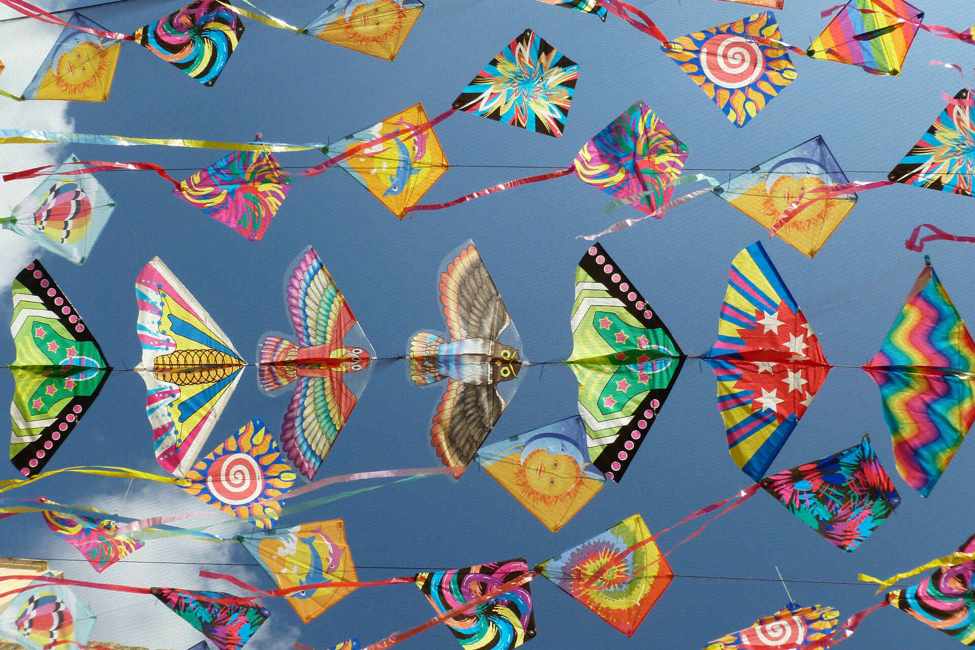 Colorful kites of different sizes suspended on a net